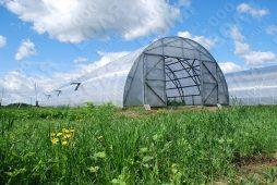 Возможна ли застройка земли, переданной для личного сельского хозяйства?